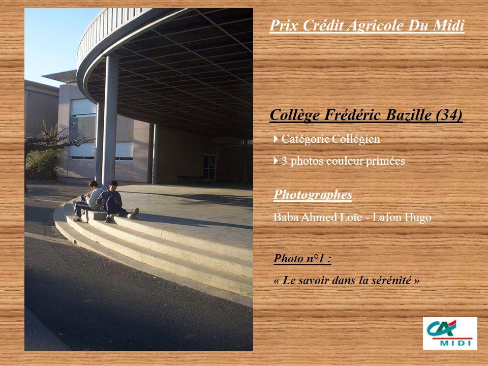 Prix Crédit Agricole Du Midi Franck Sauvage Catégorie Étudiant 1 photo couleur primée « IAE de Montpellier »