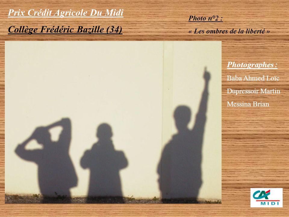 Prix Crédit Agricole Du Midi Collège Frédéric Bazille (34) Catégorie Collégien 3 photos couleur primées Photographes Baba Ahmed Loïc - Lafon Hugo Phot
