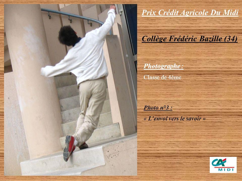 Prix Crédit Agricole Du Midi Collège Frédéric Bazille (34) Photographes : Baba Ahmed Loïc Dupressoir Martin Messina Brian Photo n°2 : « Les ombres de