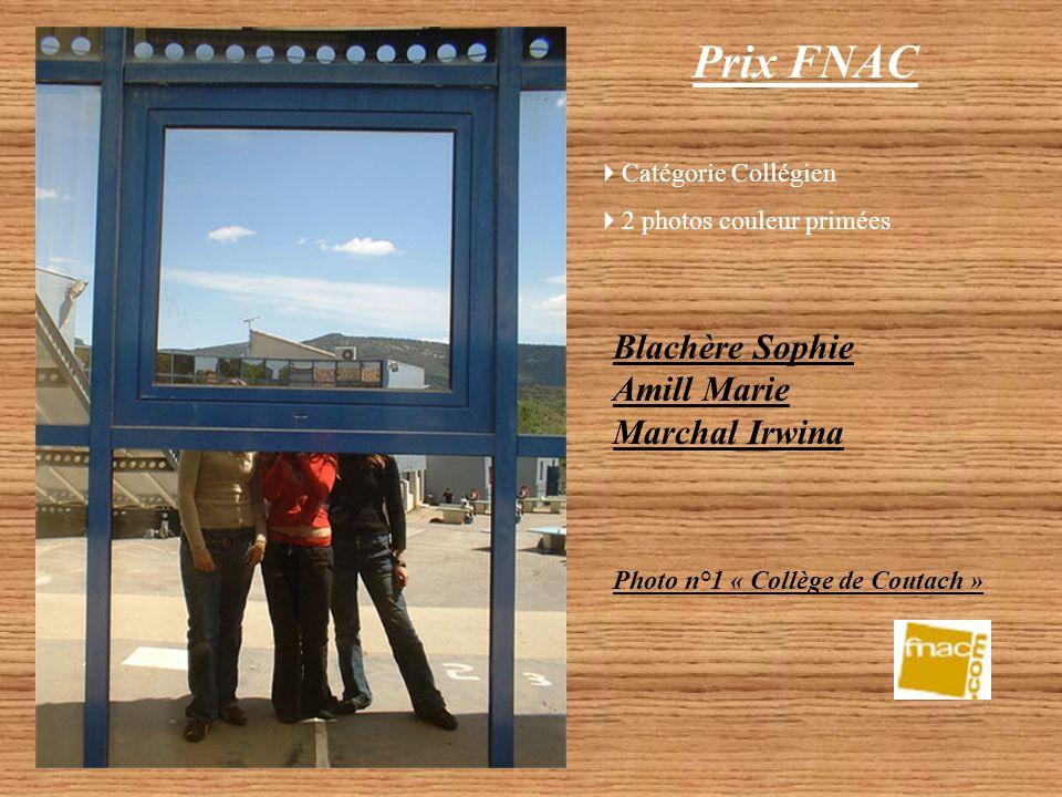 Prix FNAC Blachère Sophie, Amill Marie, Marchal Irwina – Catégorie Collégien 2 photos couleur primées (travail individuel) Lycée Jules Raimu – Catégor