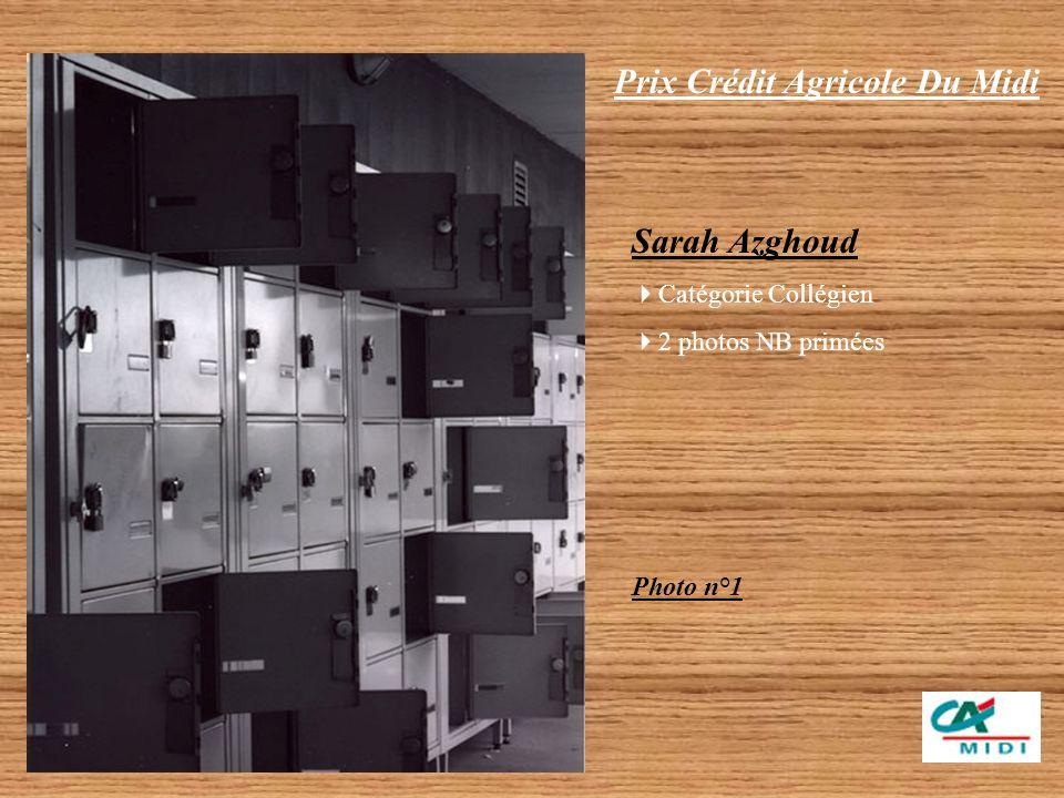 Prix Crédit Agricole Du Midi Sarah Azghoud – Catégorie Collégien 2 photos Noir et Blanc primées (travail individuel) Emilie Pesez – Catégorie Lycéen 5