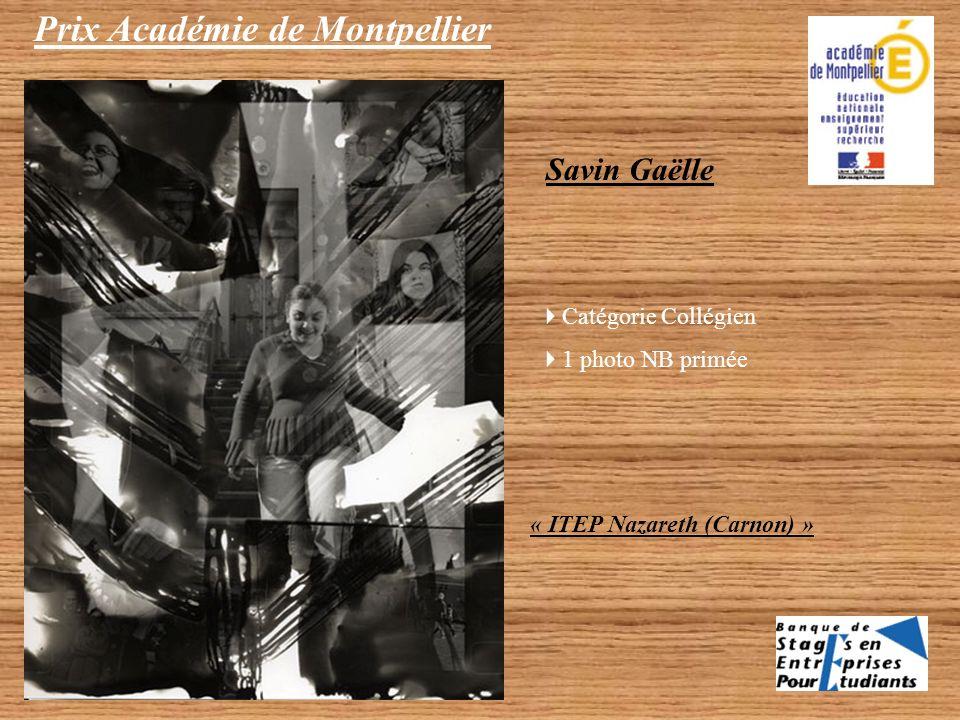 Prix Académie de Montpellier Savin Gaëlle - Catégorie Collégien 1 photo NB primée (travail individuel) Merlin Pauzié, Marine Olivier, Sarah Mulard - C