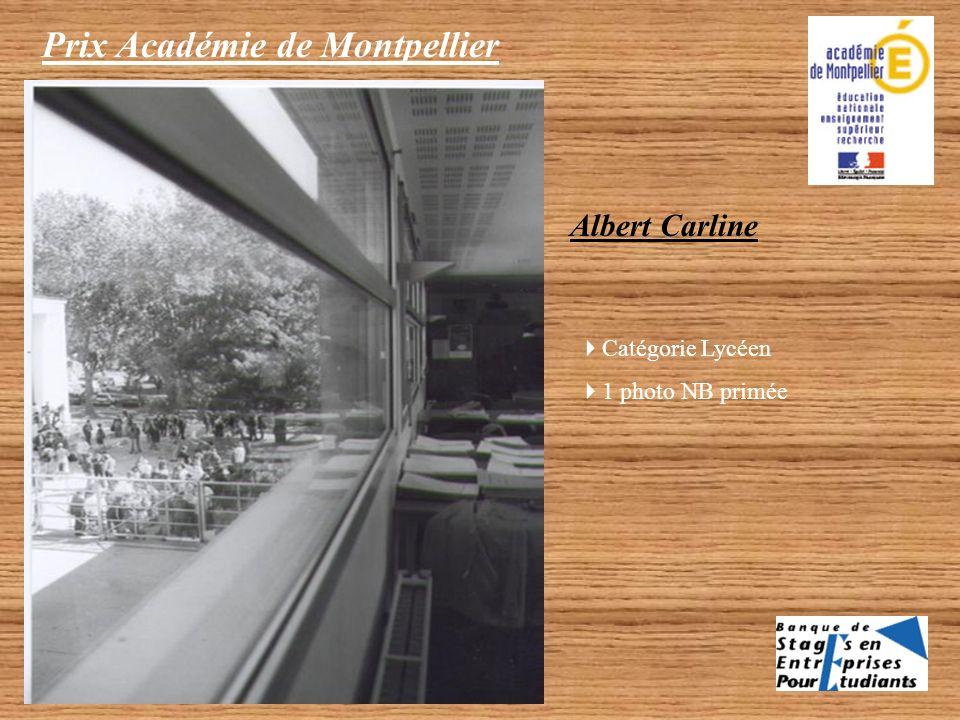 Prix Académie de Montpellier Catégorie Collégien 1 photo couleur primée Piollet Sophie