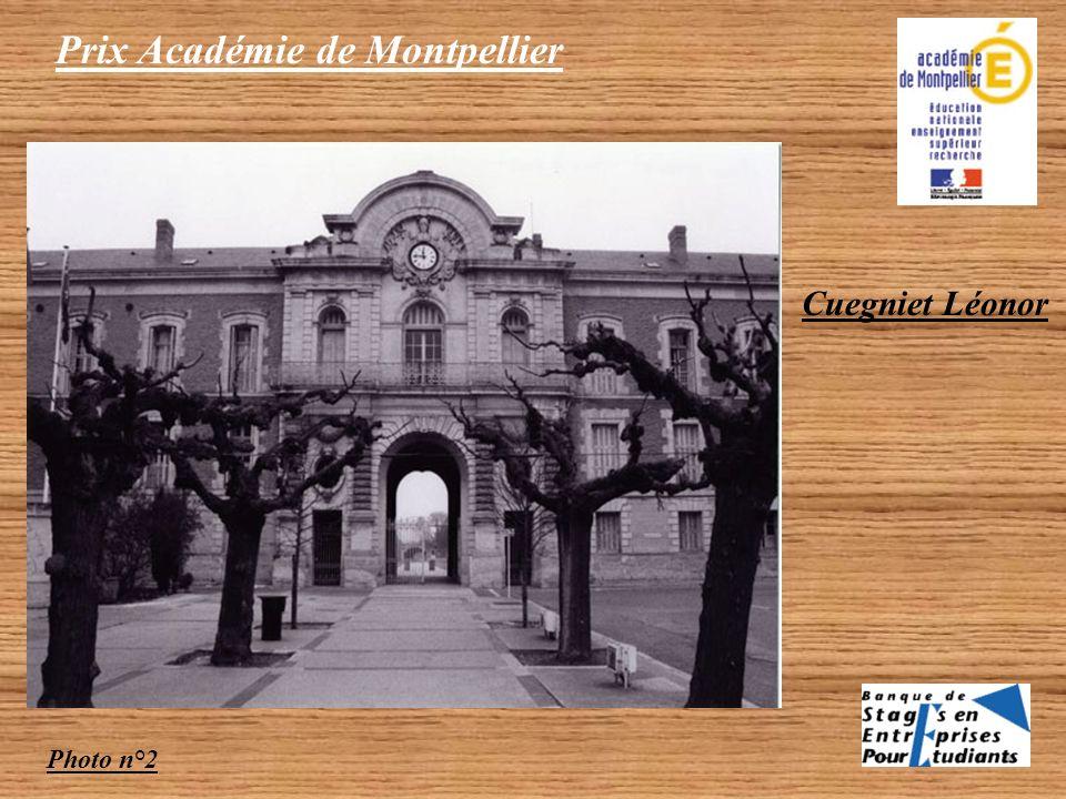 Catégorie Lycéen 1 photo couleur 2 photos NB primées Prix Académie de Montpellier Cuegniet Léonor Photo n°1