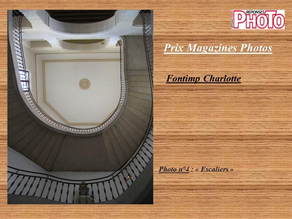 Prix Magazines Photos Fontimp Charlotte Photo n°3 : « Arcs extérieurs »