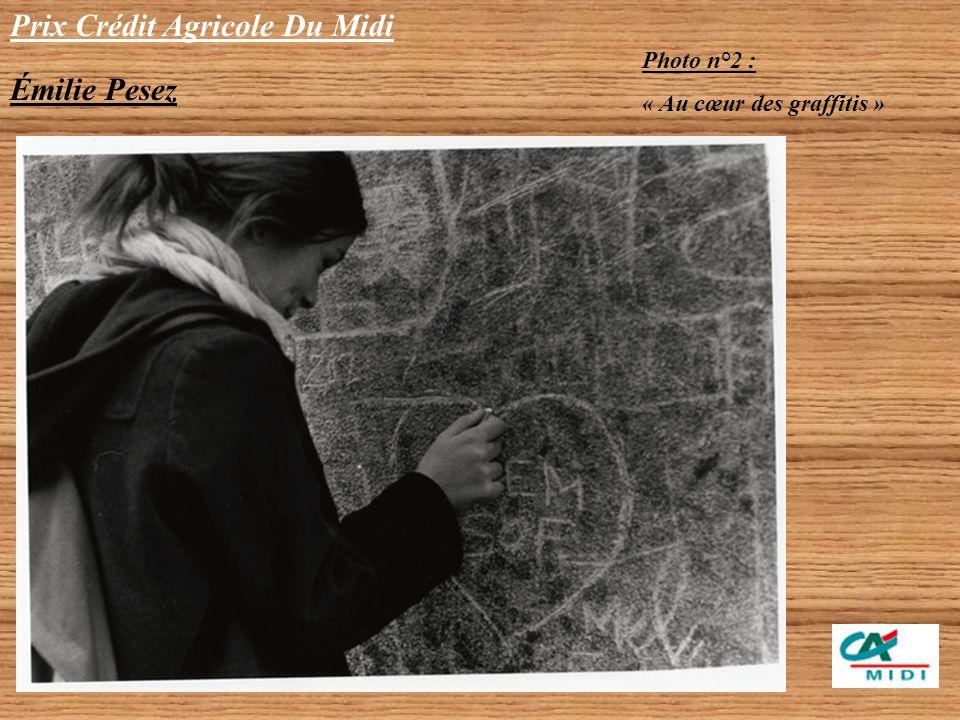 Prix Crédit Agricole Du Midi Émilie Pesez Catégorie Lycéen Ensemble de 5 photos NB Photo n°1 : « Révision du cours dhistoire »
