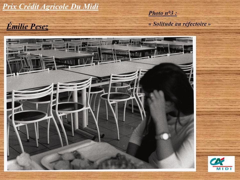 Prix Crédit Agricole Du Midi Émilie Pesez Photo n°2 : « Au cœur des graffitis »