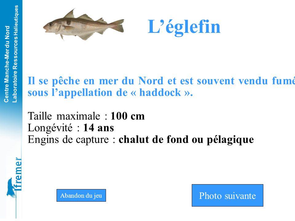Centre Manche-Mer du Nord Laboratoire Ressources Halieutiques MerluÉglefinSaint Pierre Photo n°8