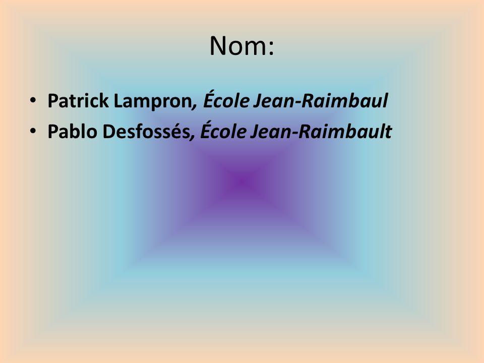 Nom: Patrick Lampron, École Jean-Raimbaul Pablo Desfossés, École Jean-Raimbault