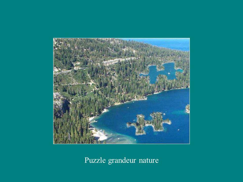 Puzzle grandeur nature