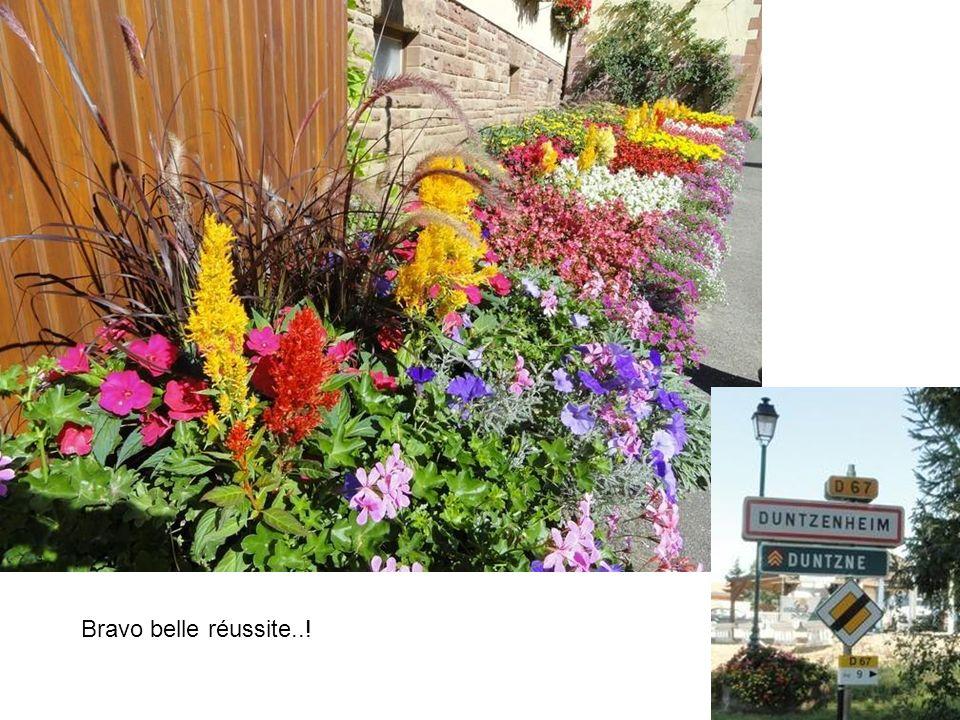 Une ferme fleurie à Duntzenheim