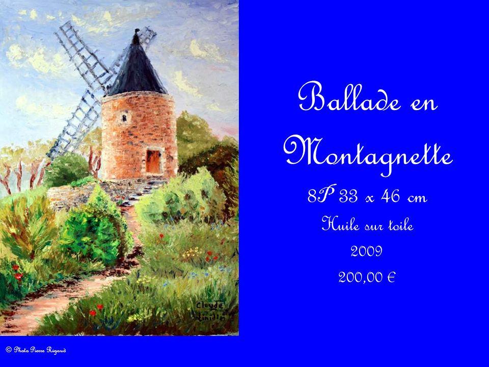 Ballade en Montagnette 8 P 33 x 46 cm Huile sur toile 2009 200,00 © Photo Pierre Rigaud