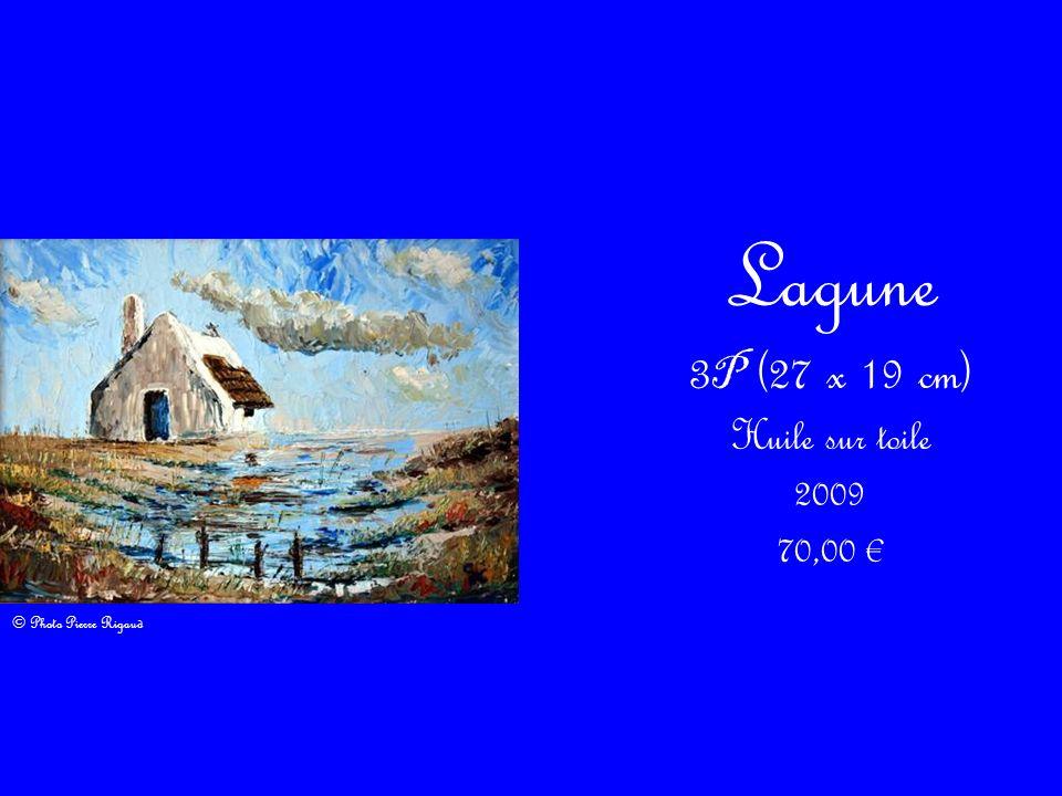 Lagune 3 P (27 x 19 cm) Huile sur toile 2009 70,00 © Photo Pierre Rigaud