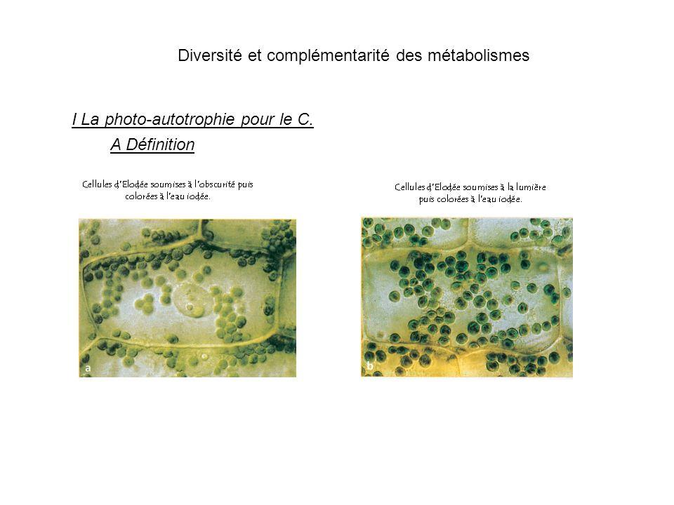 Diversité et complémentarité des métabolismes I La photo-autotrophie pour le C. A Définition