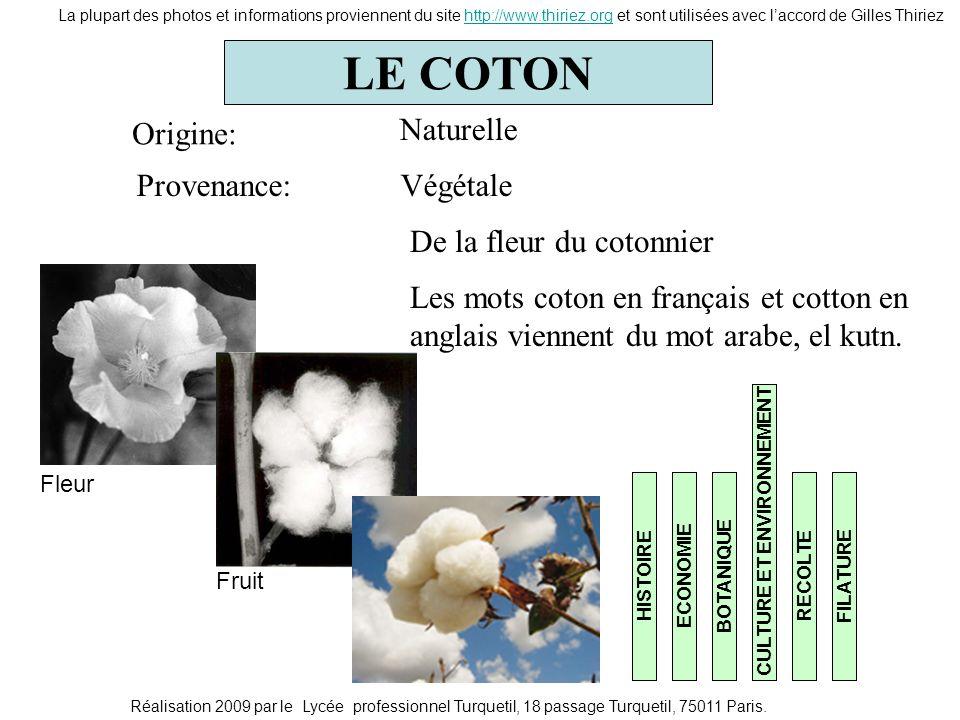 LE COTON HISTOIREECONOMIE BOTANIQUECULTURE ET ENVIRONNEMENTRECOLTEFILATURE Origine: Provenance: Naturelle Végétale De la fleur du cotonnier La plupart