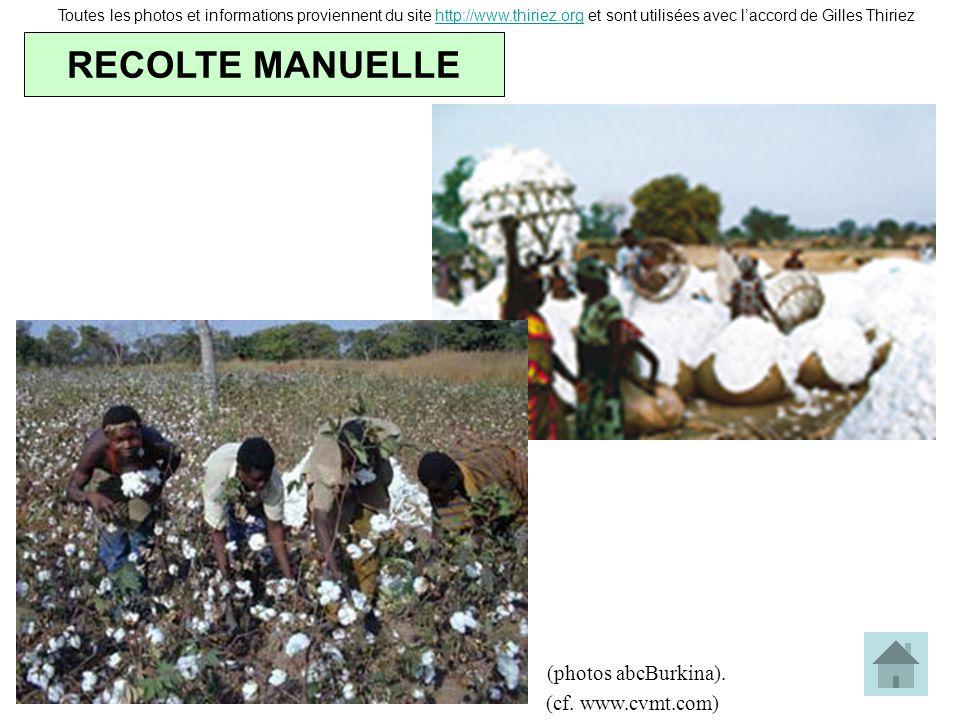 RECOLTE MANUELLE Toutes les photos et informations proviennent du site http://www.thiriez.org et sont utilisées avec laccord de Gilles Thiriezhttp://w