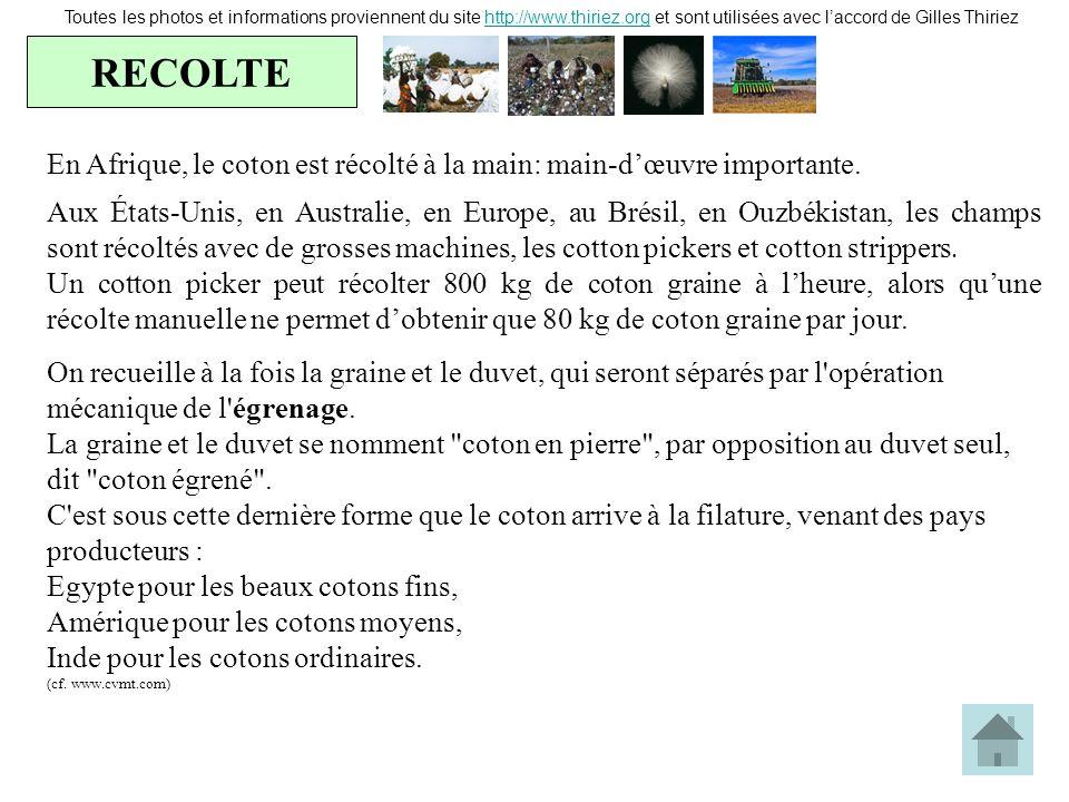 RECOLTE Toutes les photos et informations proviennent du site http://www.thiriez.org et sont utilisées avec laccord de Gilles Thiriezhttp://www.thirie