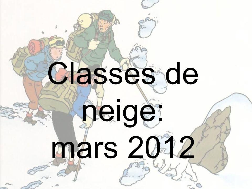 Classes de neige: mars 2012