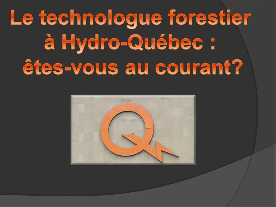 Agenda 1.Le réseau d électricité et la forêt 2. Domaines de l activité en foresterie 3.