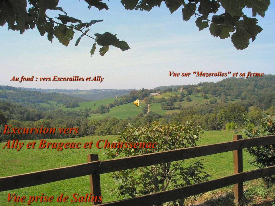 Excursion vers Ally et Brageac et Chaussenac Au fond : vers Escorailles et Ally Vue sur Mazerolles et sa ferme Vue prise de Salins