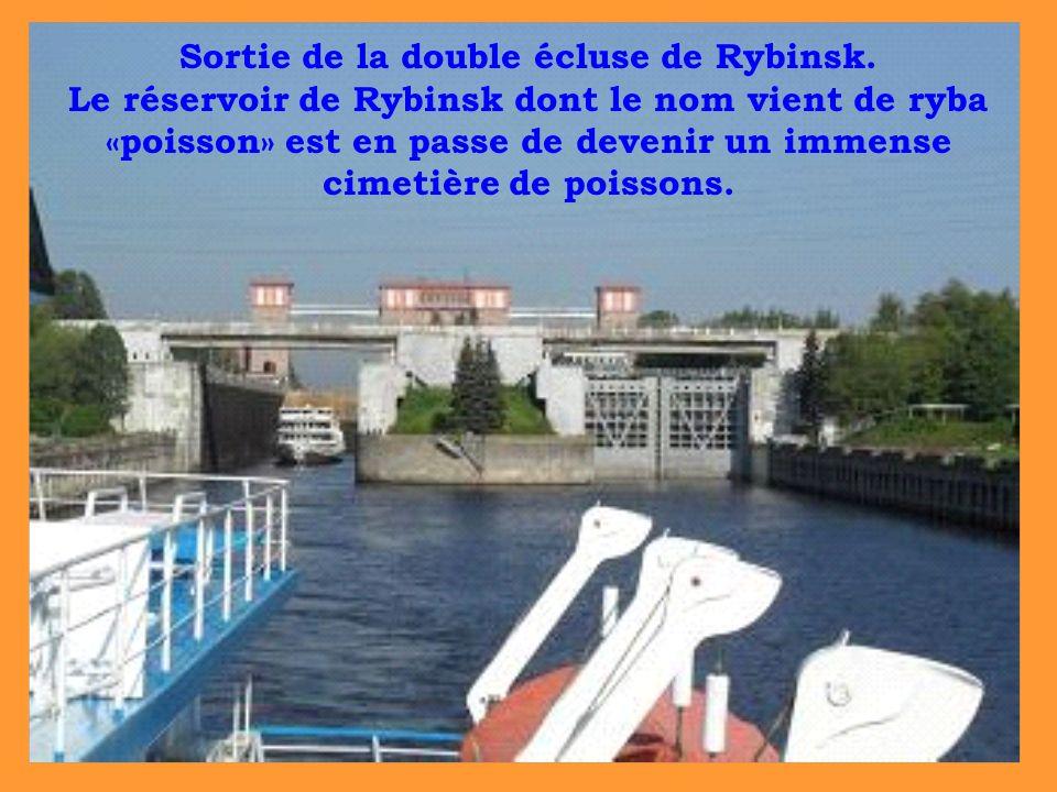 Sortie de la double écluse de Rybinsk. Le réservoir de Rybinsk dont le nom vient de ryba «poisson» est en passe de devenir un immense cimetière de poi