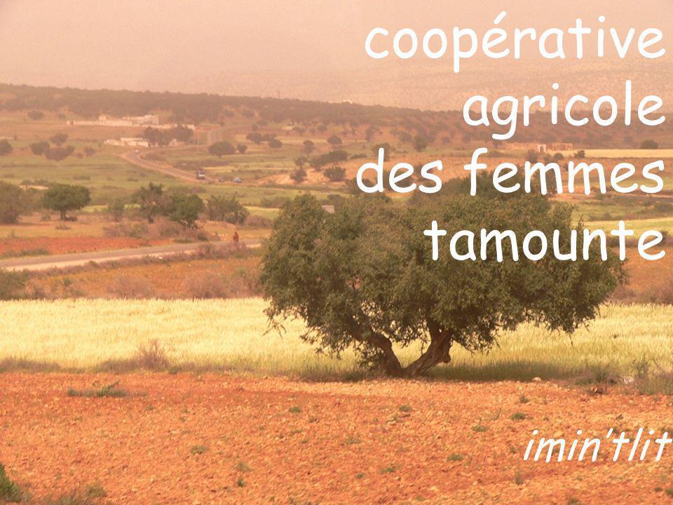 coopérative agricole des femmes tamounte imintlit