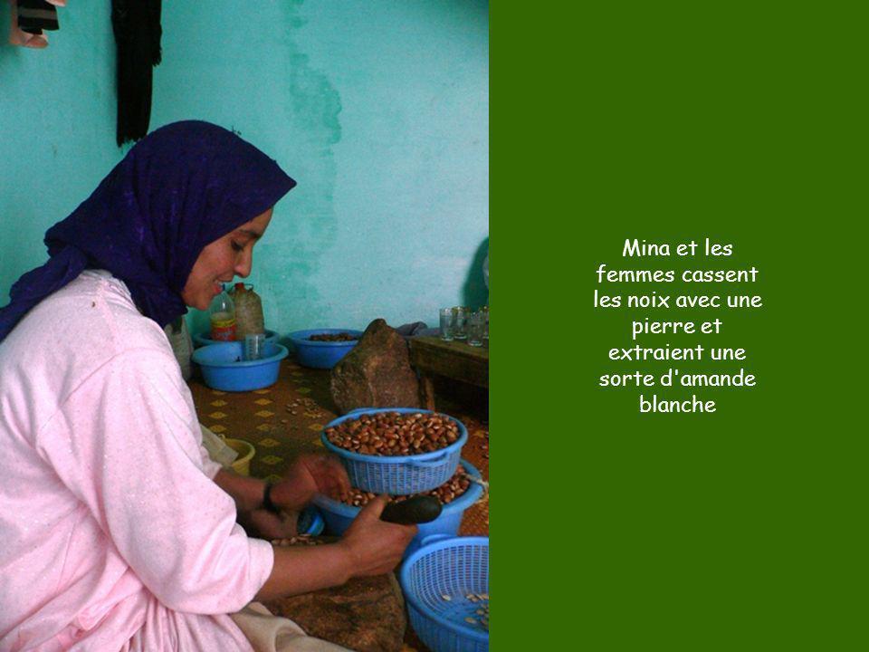 Mina et les femmes cassent les noix avec une pierre et extraient une sorte d'amande blanche