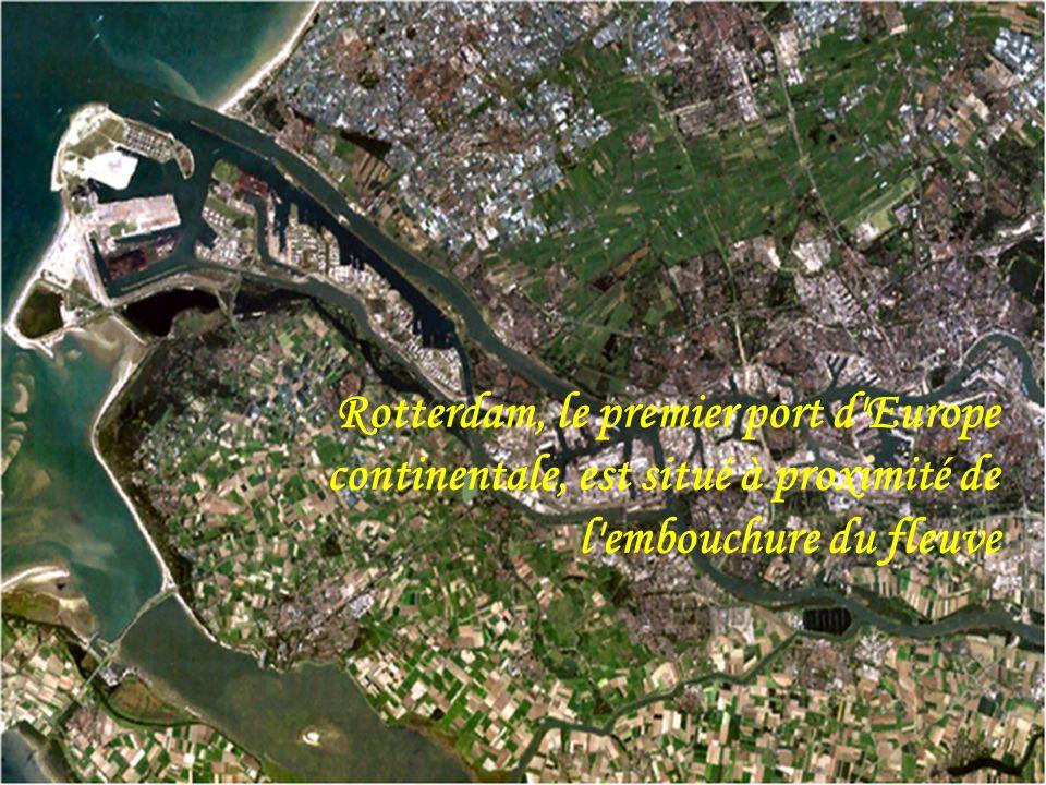 L'Aar en ville de Berne. Affluents du Rhin 590 m 3 /s L'Ill et le quartier de la Petite France à Strasbourg 58 m 3 /s Le Neckar 145 m 3 /s Le Main à W