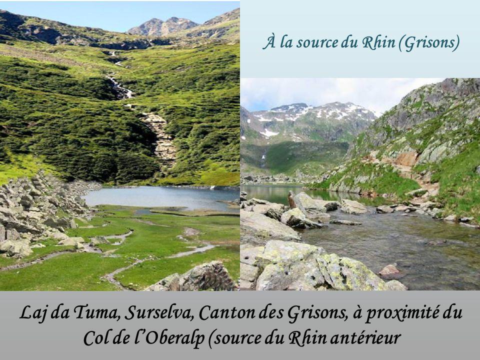 Source du Rhin 1ère cascade Le Rhin coule vers le nord-ouest, traversant la Suisse, la France, lAllemagne et les Pays-Bas, jusquà son embouchure au bo