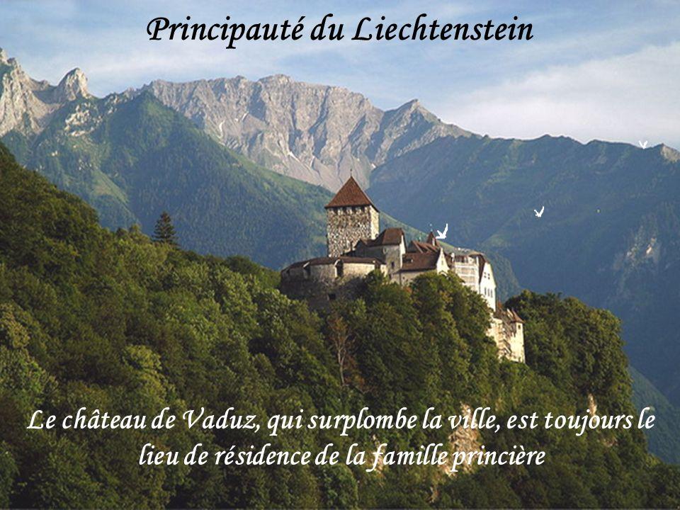 . Le Rhin forme la frontière entre la Suisse et le Liechtenstein. Il traverse le lac de Constance à l'ouest de Bregenz, puis coule vers l'ouest. Son r