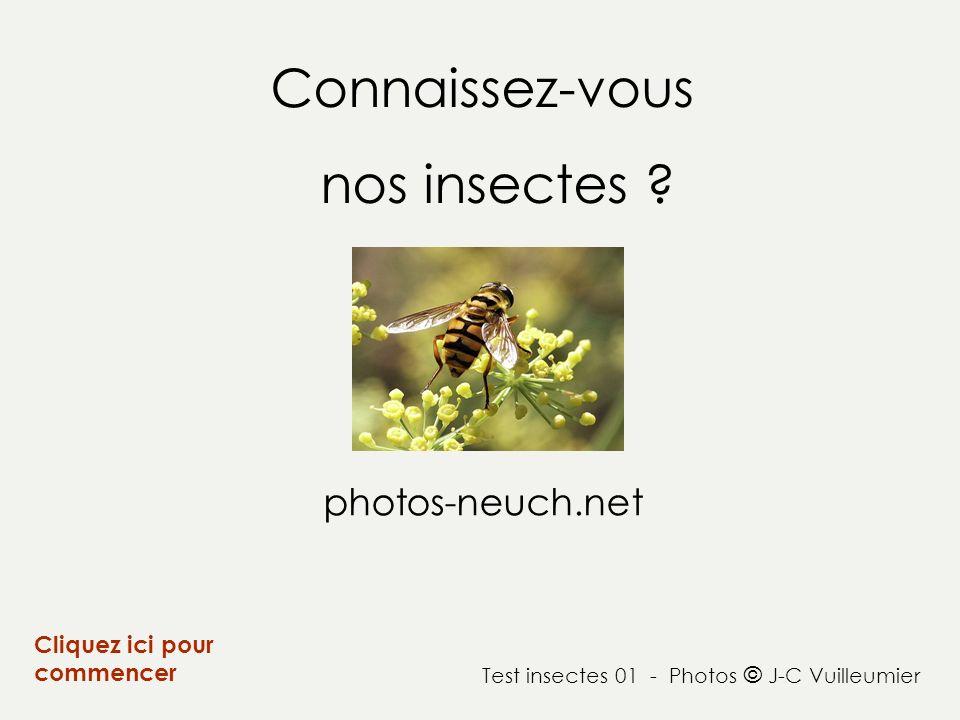 Connaissez-vous nos insectes ? Cliquez ici pour commencer photos-neuch.net Test insectes 01 - Photos © J-C Vuilleumier