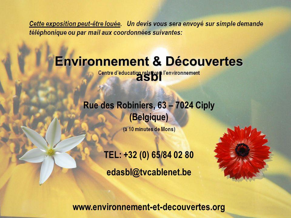 Environnement & Découvertes asbl Centre déducation relative à lenvironnement Rue des Robiniers, 63 – 7024 Ciply (Belgique) (à 10 minutes de Mons) TEL: