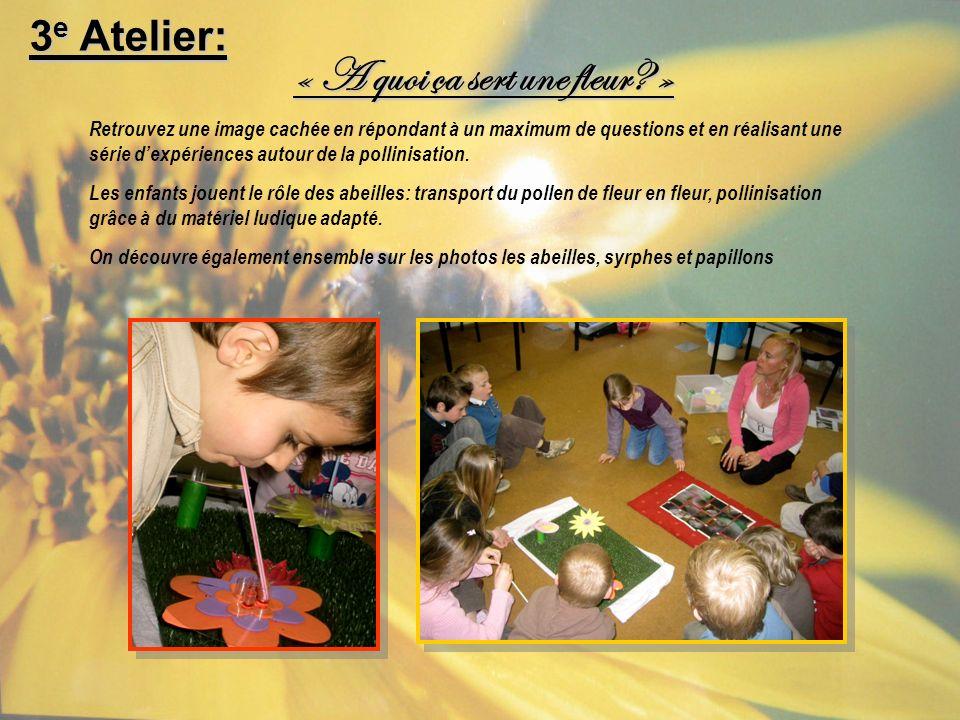 3 e Atelier: (suite)