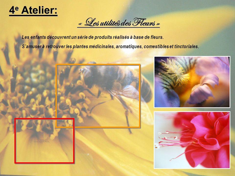 « Les utilités des Fleurs » Les enfants découvrent un série de produits réalisés à base de fleurs. Samuser à retrouver les plantes médicinales, aromat