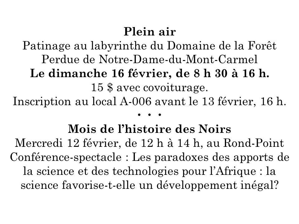 Plein air Patinage au labyrinthe du Domaine de la Forêt Perdue de Notre-Dame-du-Mont-Carmel Le dimanche 16 février, de 8 h 30 à 16 h. 15 $ avec covoit
