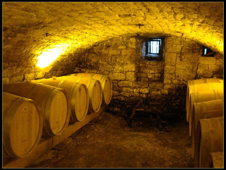 Visite de la cave Domaine de la Grave