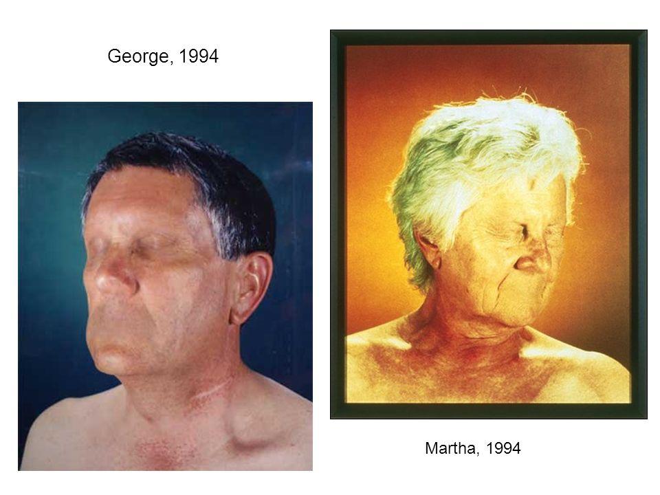 Trois herakles Ces images sont le résultat d une fusion numérique entre un visage antique et un modèle contemporain, deux types morphologiques distanciés dans le temps.