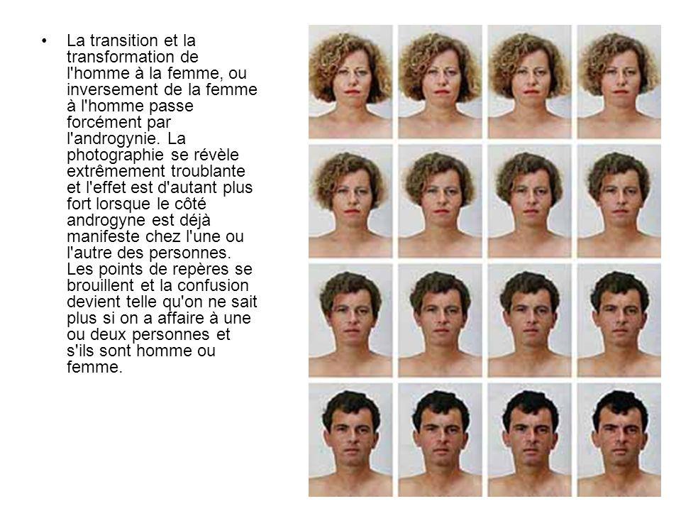 La transition et la transformation de l'homme à la femme, ou inversement de la femme à l'homme passe forcément par l'androgynie. La photographie se ré