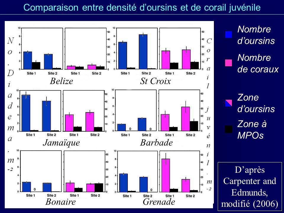 Comparaison entre zones doursins et à MPOs Daprès Carpenter and Edmunds (2006) 2,5 à 12,9.m-²4,5 à 32,3.m-² Densité de corail juvénile (sites Ire) 0 à 1,7 ind.m-²1,7 à 8,9 ind.m-² Densité moyenne en Diadema 30-79 %0-20 % Couverture en MPOs Zone à MPOsZone doursins 0-7 %7-37 % Couverture en CCA 13-53%29-77% Couverture en gazon de MPOs