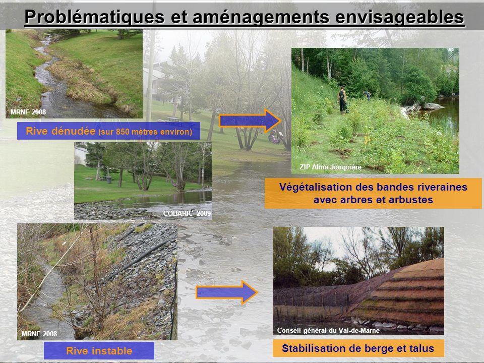 Problématiques et aménagements envisageables Végétalisation des bandes riveraines avec arbres et arbustes MRNF 2008 COBARIC 2009 ZIP Alma-Jonquière Rive dénudée (sur 850 mètres environ) Stabilisation de berge et talus MRNF 2008 Conseil général du Val-de-Marne Rive instable