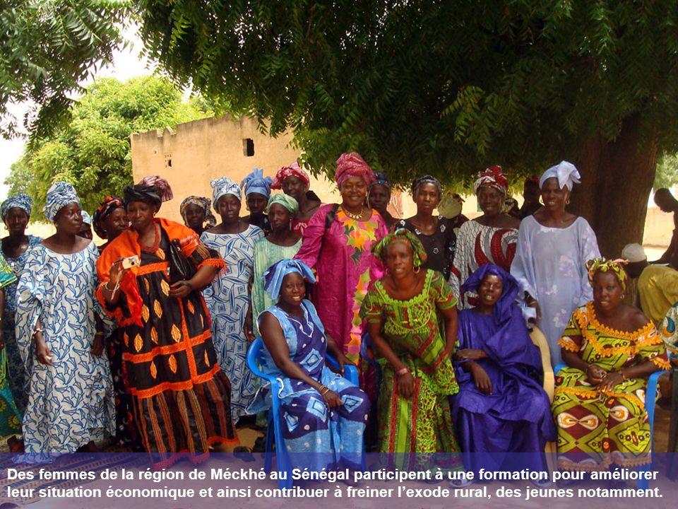Des femmes de la région de Méckhé au Sénégal participent à une formation pour améliorer leur situation économique et ainsi contribuer à freiner lexode rural, des jeunes notamment.