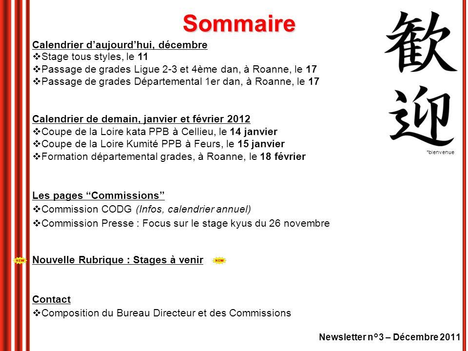 Newsletter n°3 – Décembre 2011 Calendrier daujourdhui, décembre Stage tous styles, le 11 Passage de grades Ligue 2-3 et 4ème dan, à Roanne, le 17 Passage de grades Départemental 1er dan, à Roanne, le 17 Calendrier de demain, janvier et février 2012 Coupe de la Loire kata PPB à Cellieu, le 14 janvier Coupe de la Loire Kumité PPB à Feurs, le 15 janvier Formation départemental grades, à Roanne, le 18 février Les pages Commissions Commission CODG (Infos, calendrier annuel) Commission Presse : Focus sur le stage kyus du 26 novembre Nouvelle Rubrique : Stages à venir Contact Composition du Bureau Directeur et des Commissions *bienvenue Sommaire
