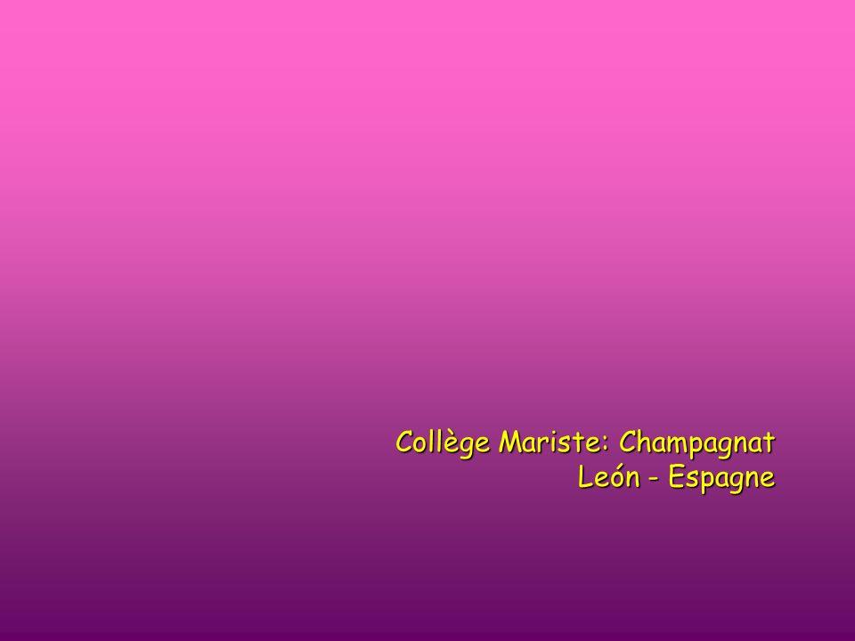 Collège Mariste: Champagnat León - Espagne