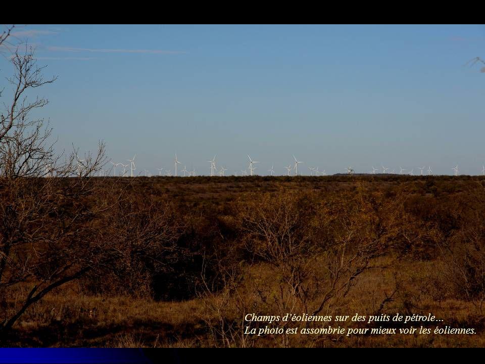 Champs déoliennes sur des puits de pétrole… La photo est assombrie pour mieux voir les éoliennes.