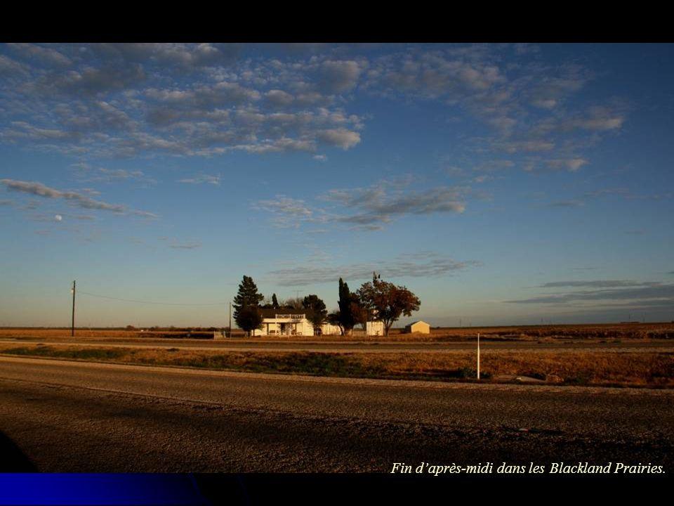 Fin daprès-midi dans les Blackland Prairies.