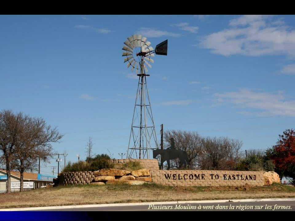 Cisco TX, 3500 population