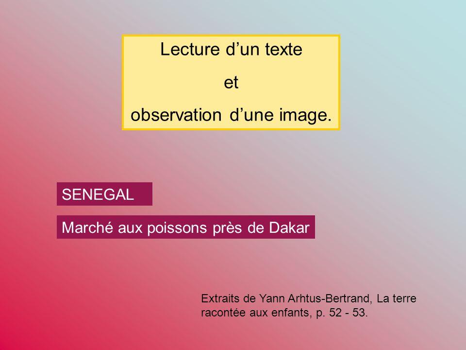 SENEGAL Marché aux poissons près de Dakar Lecture dun texte et observation dune image.