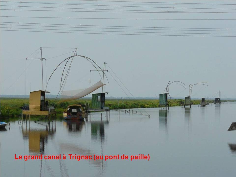 Le grand canal à Trignac (au pont de paille)
