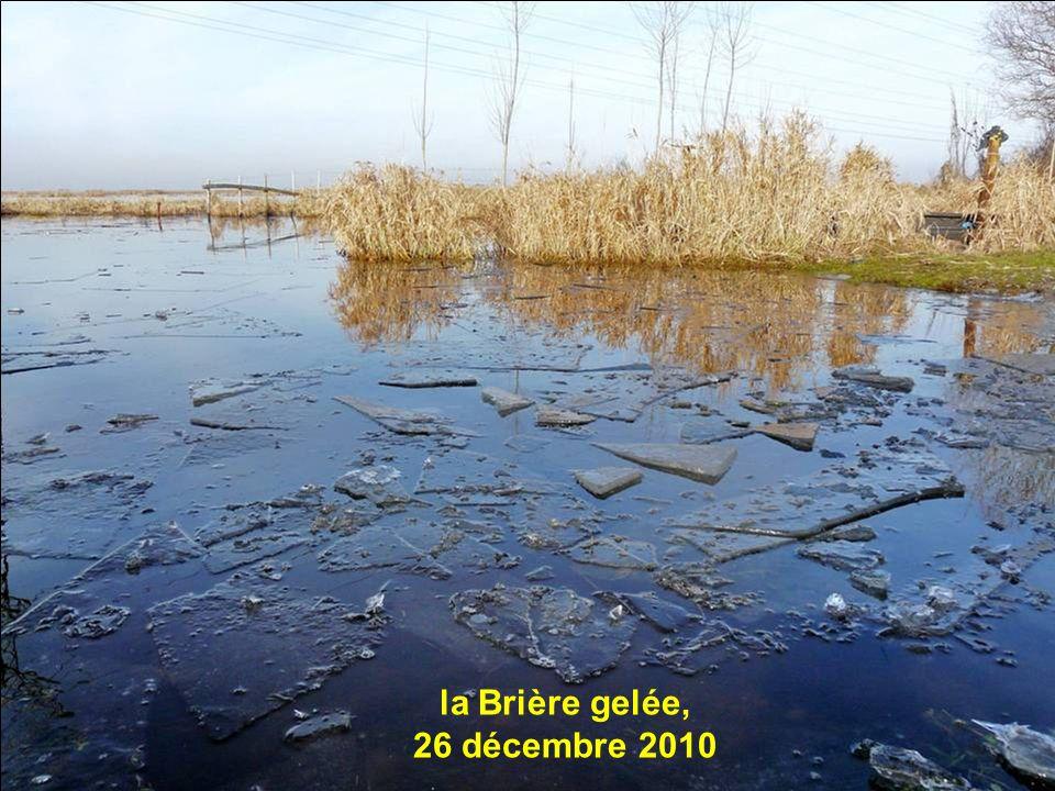 la Brière gelée, 26 décembre 2010