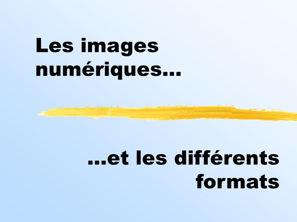 Les images numériques… …et les différents formats